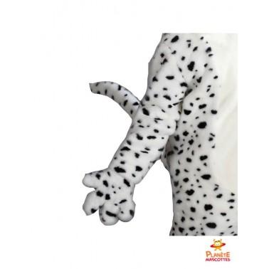 Détails mascotte dalmatien