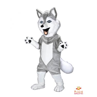 Costume mascotte husky