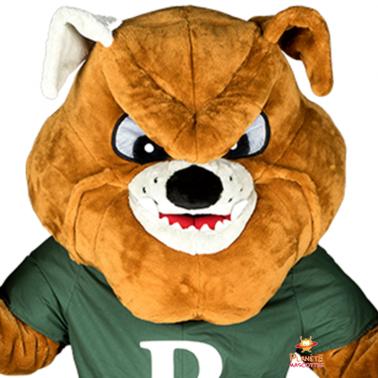Détail mascotte bulldog Planète Mascottes