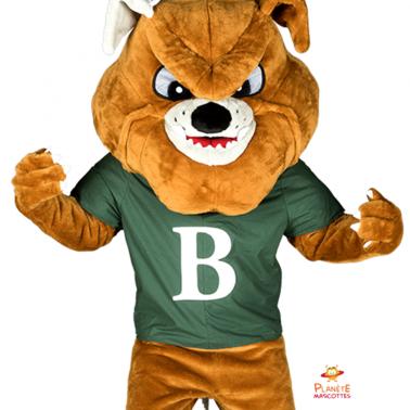 Face mascotte bulldog Planète Mascottes
