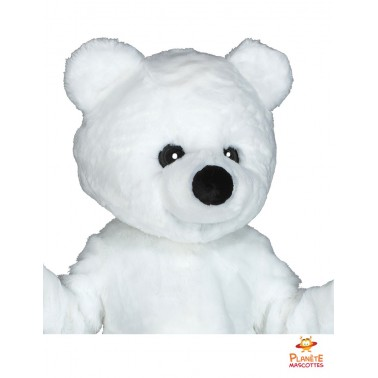 Ours blanc mascotte