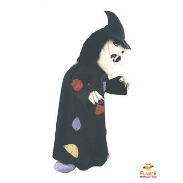 Witch costume mascot