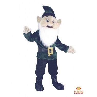 Leprechaun Costume mascot