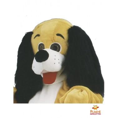 Détails mascotte chien teckel