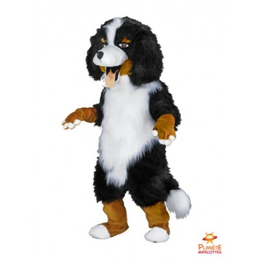 Mascota del perro Saint-Bernard Planète Mascottes
