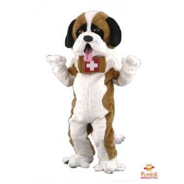 Saint Bernard Dog Mascot